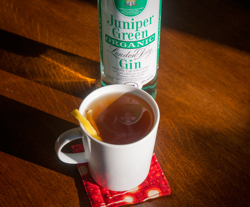 The Hot Gin Toddy
